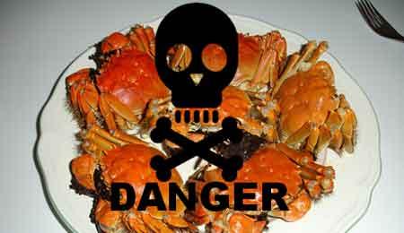 上海蟹、発ガン性化学物質で販売禁止に