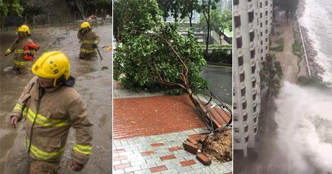 台風被害 HATO