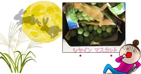 香港の重要行事「中秋節」日本のフルーツが大人気